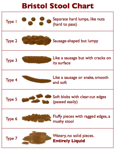 how-to-describe-poo